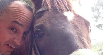 סוס אף פעם לא מהמר על האדם הלא נכון